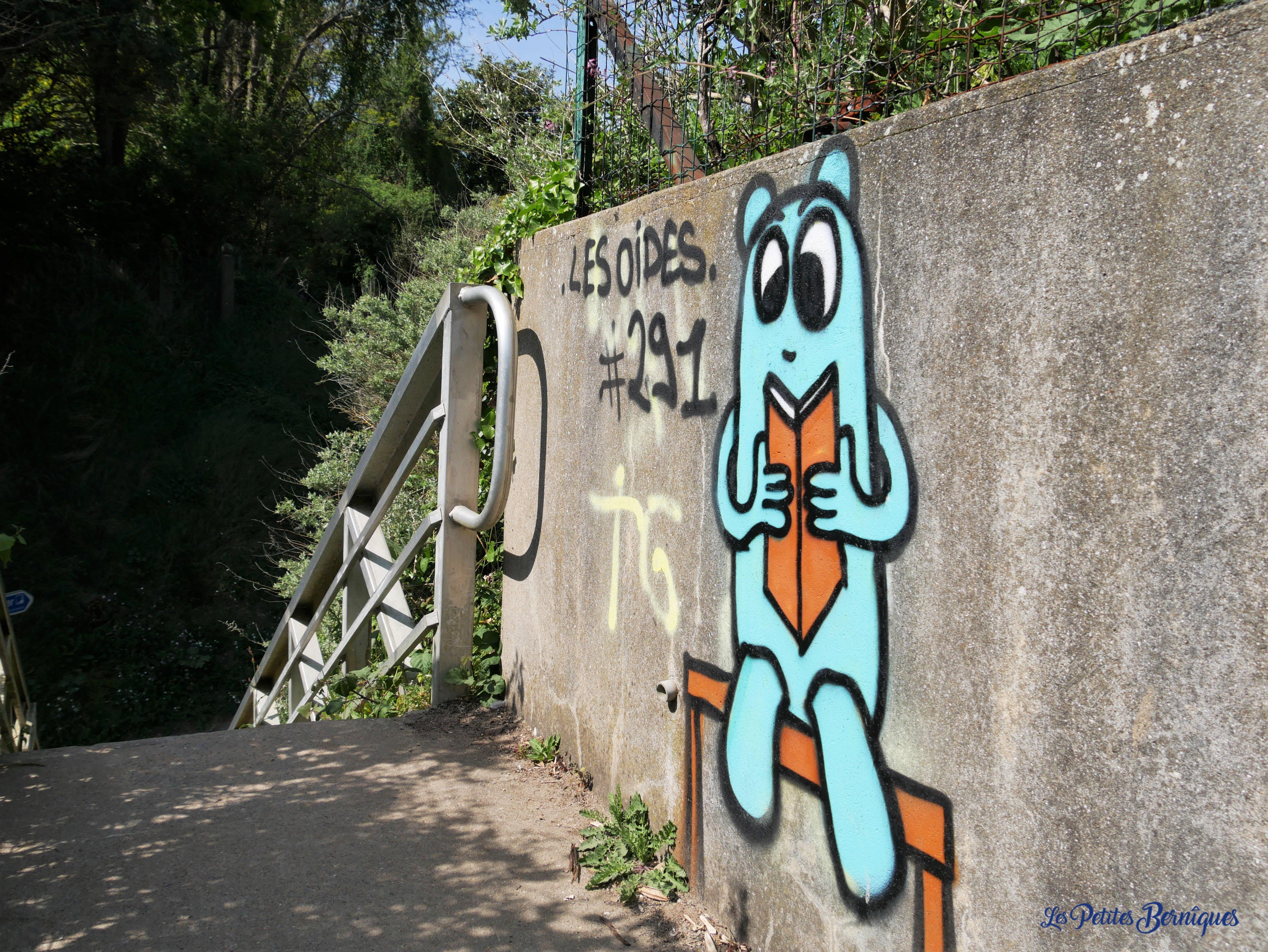 Sentier des Douaniers - Les Oides