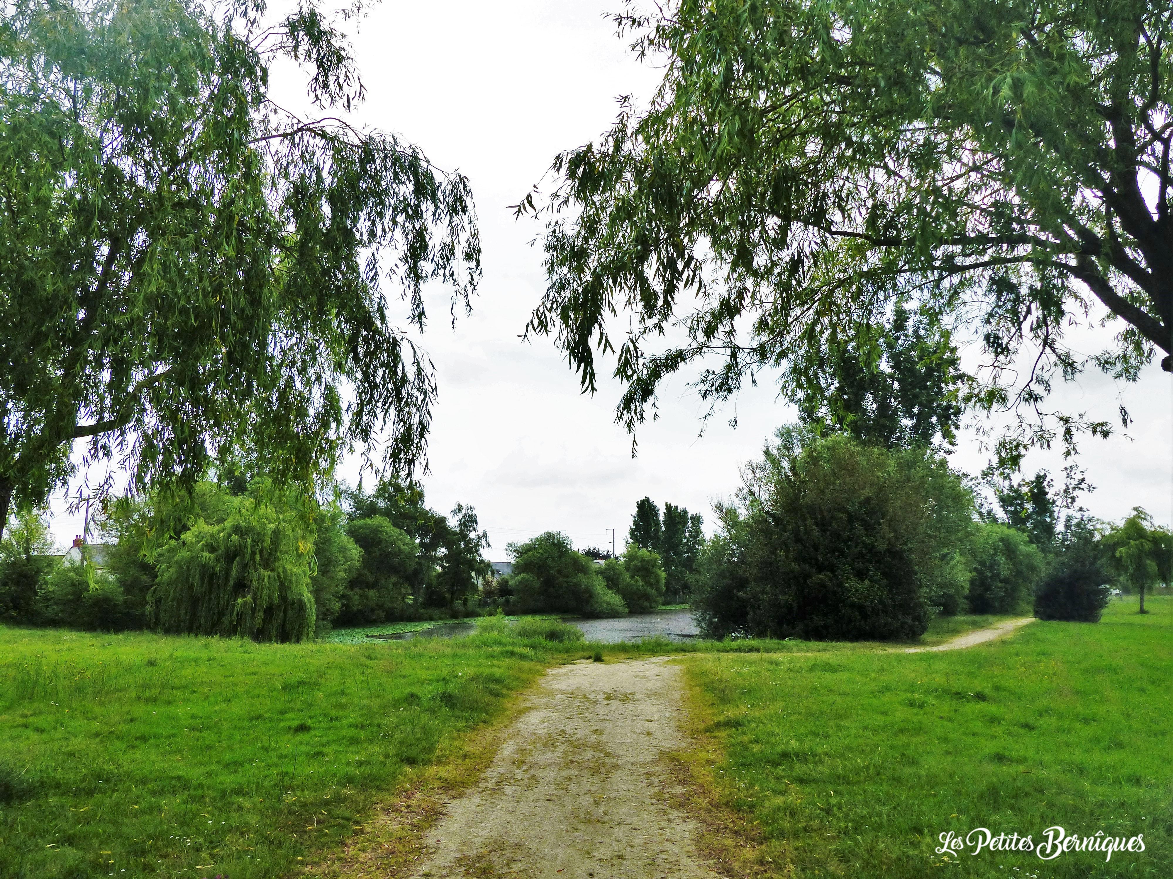 Chemins de brouettes
