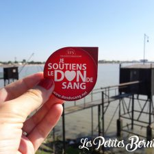 saint-nazaire - don du sang - journee mondiale