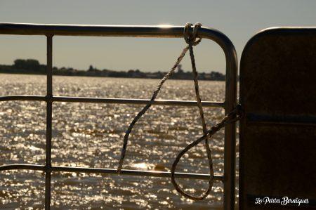 Croisière sur l'estuaire