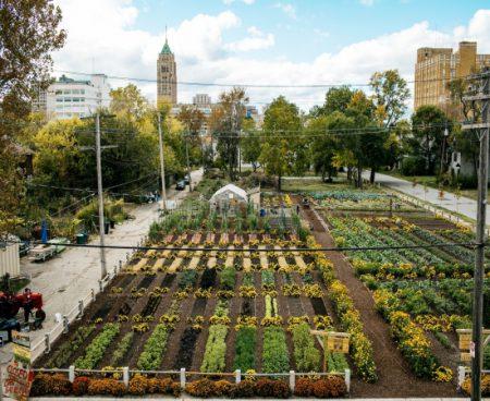 Projet de ferme urbaine à Detroit