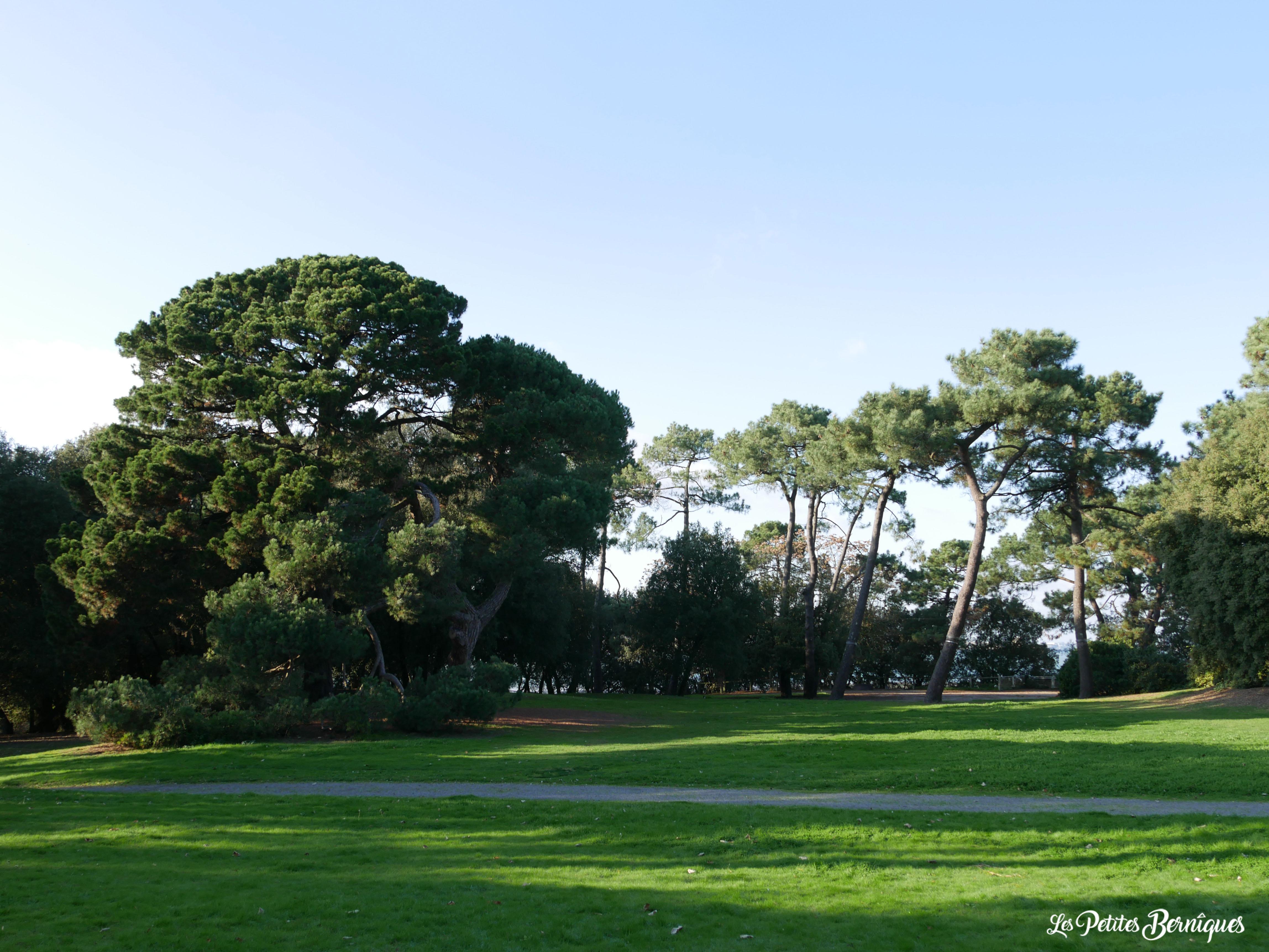 Balade atypique : Parc du Pointeau