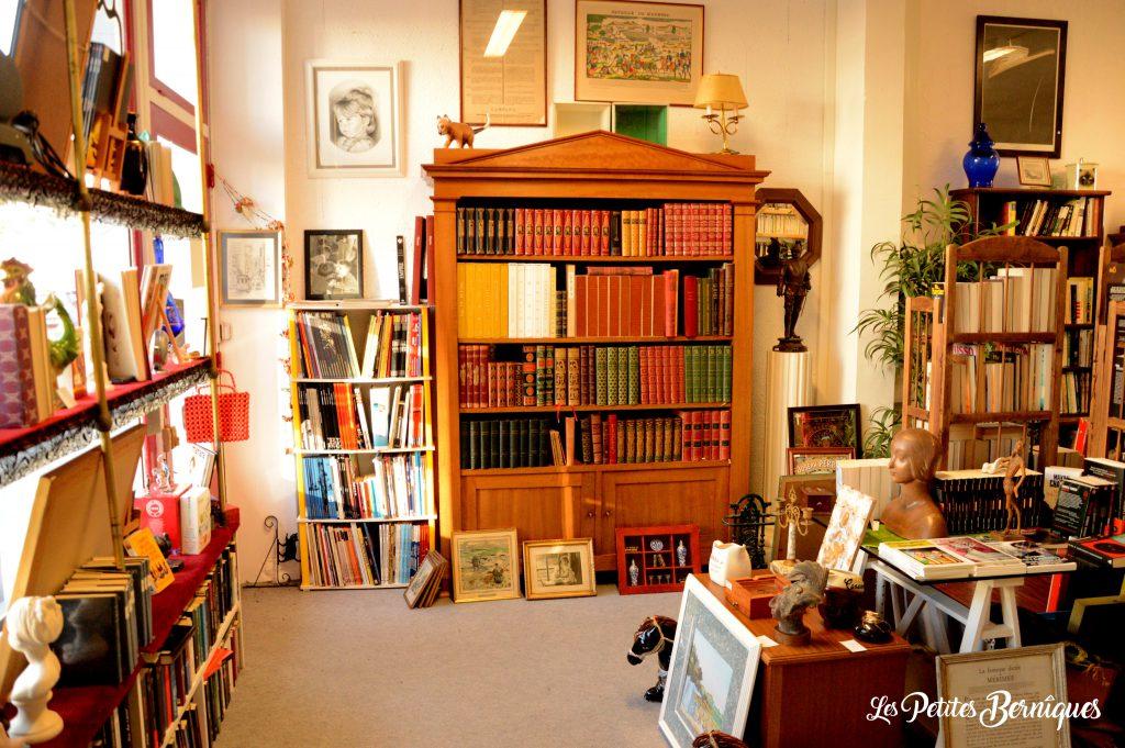 le chat qui lit saint-nazaire livres