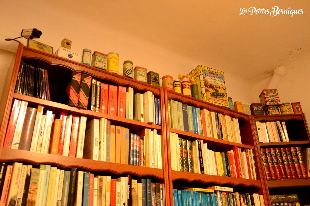 livres le chat qui lit