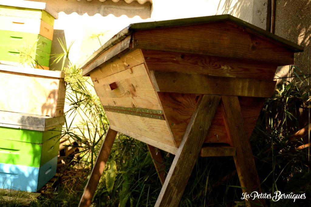 ruches kenyanes apiouest