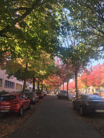 Boulevard de la libération