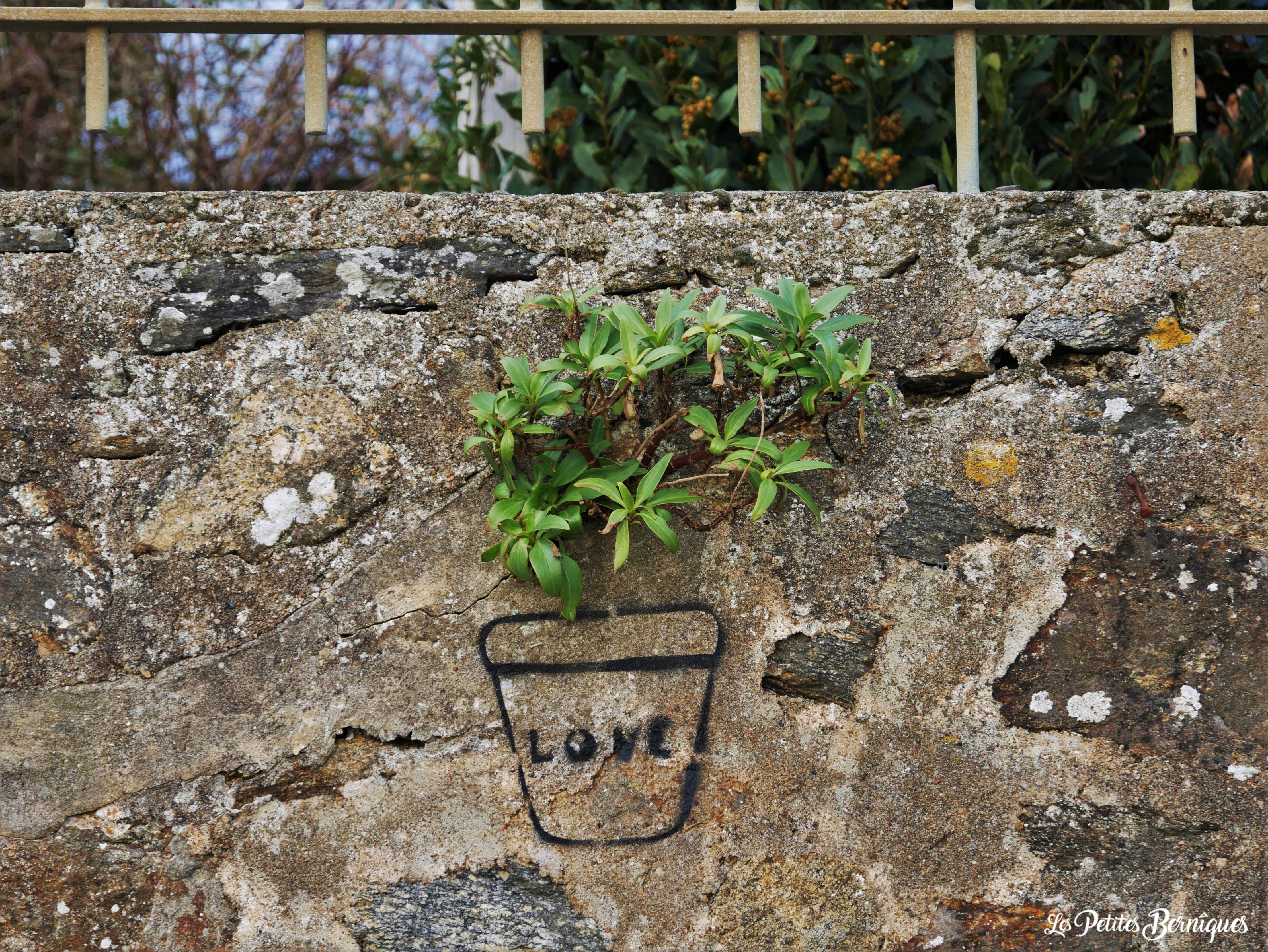 Pot de fleurs love Saint-Nazaire