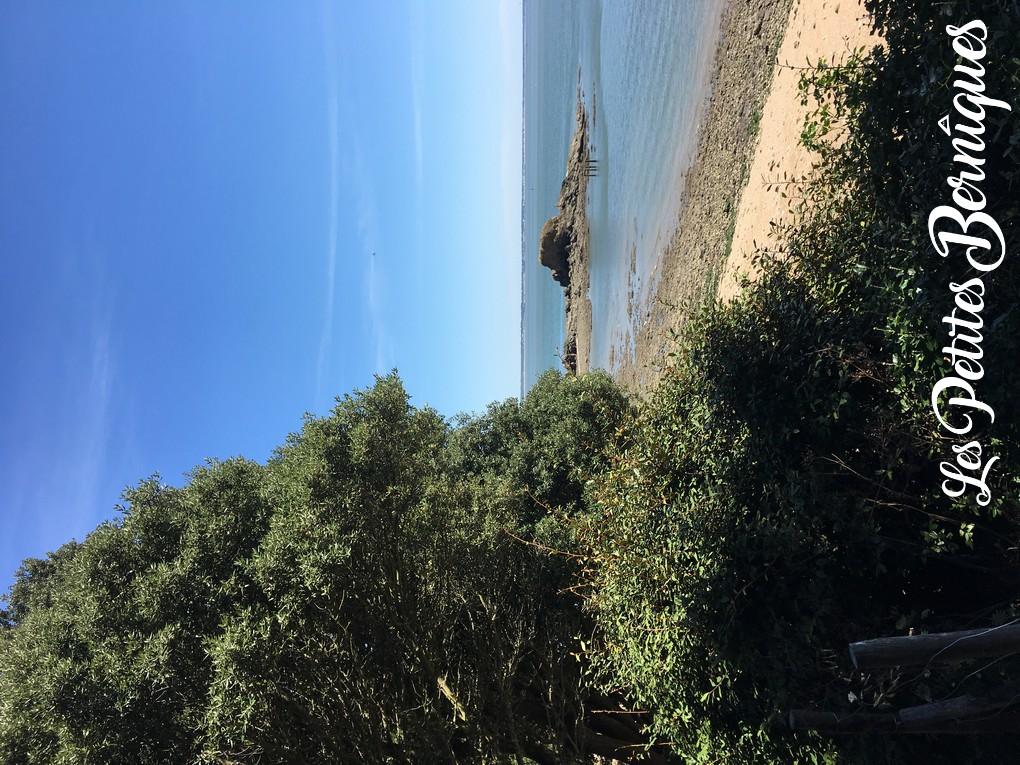 Saint-Nazaire - plage rocher du lion