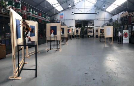 L'exposition au Garage